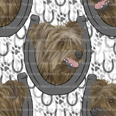 Pyrenean Shepherd horseshoe portraits C - small