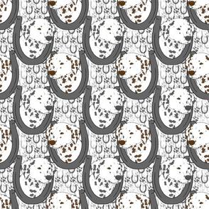 Dalmatian horseshoe portraits B