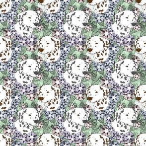 Floral Dalmatian portraits B
