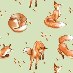 Happy Fox / Olive