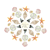 Watercolor Shells - Florida Mandala 1