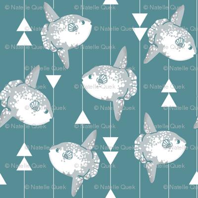 Sunfish (larger print)