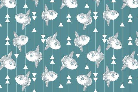 Rsunfish-geometric-01_shop_preview