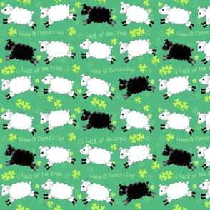 Counting Sheep Shamrocks small