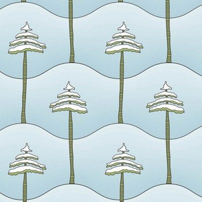 Snowy Mountian Pine