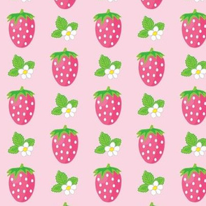 strawberries and blossoms on pink