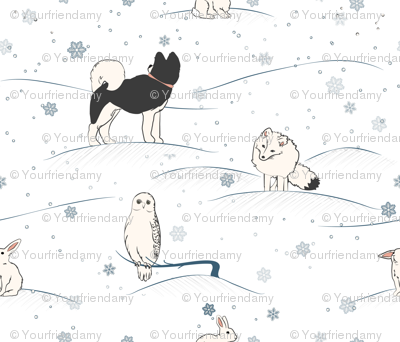 Arctic Hare and Friends