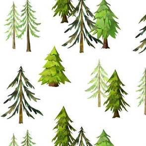 Pine Tree Forest - Woodland Trees MEDIUM SCALE B