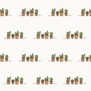 Christmas cactus- watercolor