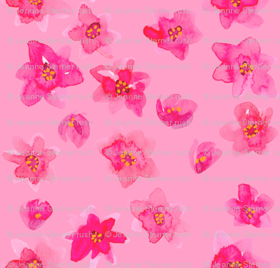 tiny pink flowers pink