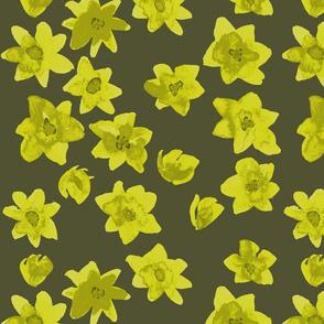 small yellow flowers dark