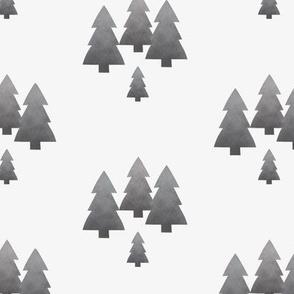pine trees grey