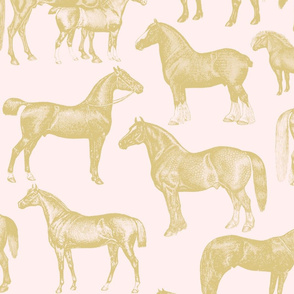 Pink and Gold horses