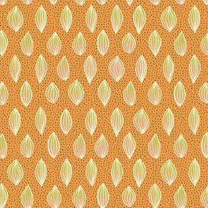 seed motifs on orange
