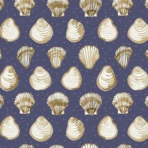 Shells on blue