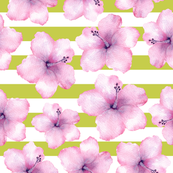 Pink Hibiscus On Stripe