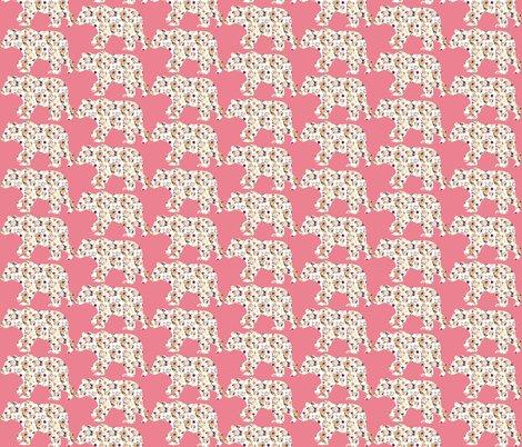 Rbear-paprika-1-on-pink_shop_preview