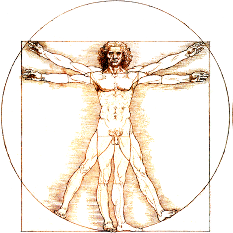 11 no words uncensored Vitruvian Man Leonardo da Vinci classical ...