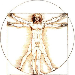 11 no words uncensored Vitruvian Man Leonardo da Vinci classical Renaissance anatomy anatomical studies portraits ratios sepia antique nude naked architecture nudity circles squares body proportions mathematics art
