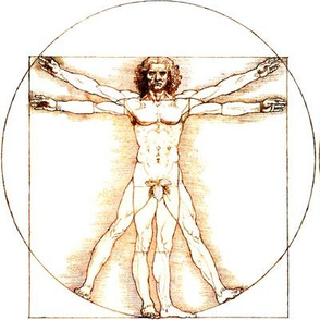 13 censored no words Vitruvian Man Leonardo da Vinci classical Renaissance anatomy anatomical studies portraits ratios antique nude naked architecture fig leaves leaf nudity circles squares body proportions mathematics art