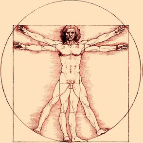 9 no words uncensored Vitruvian Man Leonardo da Vinci classical Renaissance anatomy anatomical studies portraits ratios sepia antique nude naked architecture brown nudity circles squares body proportions mathematics art