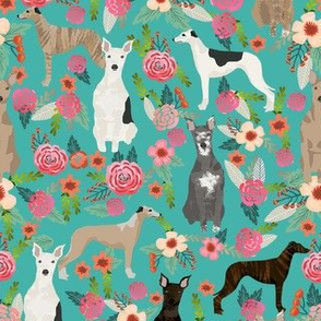 whippet florals mixed coats dog breed fabric teal blue
