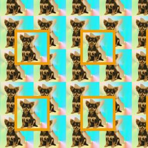 chihuahua kaleidoscope