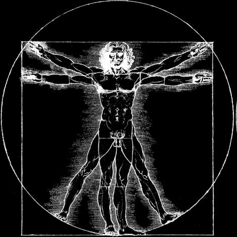 7 uncensored no words Vitruvian Man Leonardo da Vinci classical ...