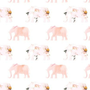 elephant march, pink floral 2 inch wide elephant
