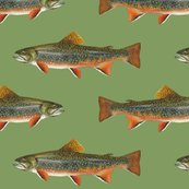 R0-0-brook-trout-on-829b61-vintage-green_shop_thumb