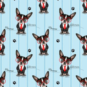 Boston Terrier business Pattern S