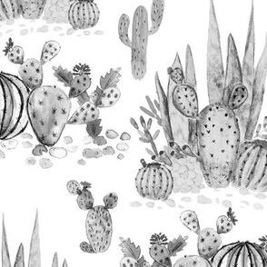 Watercolor . Cacti .