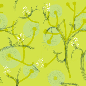 Arbres fleuri vert