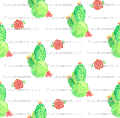 Cacti and Roses