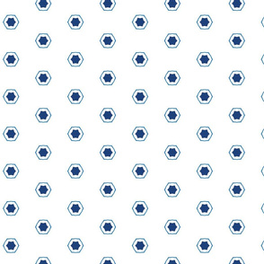 Blue and White Octagon and Stars