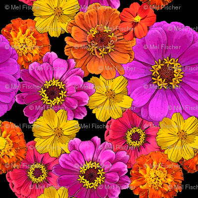Colorful Flowers on Black