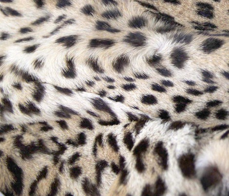 Rrlayers-of-snow-leopardprint_contest163825preview