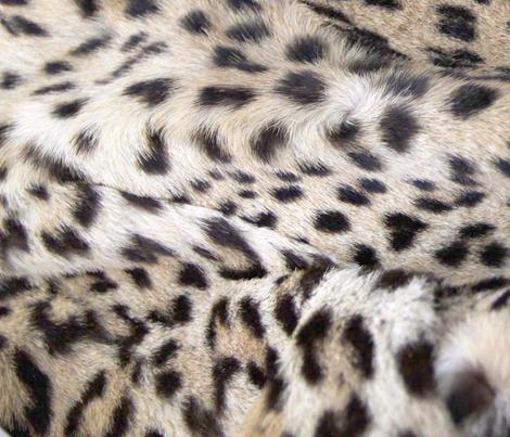 layers of snow leopardprint fabric by rustycate on Spoonflower - custom fabric
