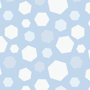 Winter Hexagon Snow