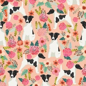 smooth fox terrier black and white coat floral fabric blush