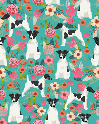 smooth fox terrier black and white coat floral fabric turquoise