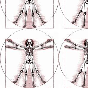 6 no words Vitruvian Man skeleton Leonardo da Vinci classical Renaissance anatomy anatomical studies portraits ratios sepia antique architecture circles squares body proportions mathematics art