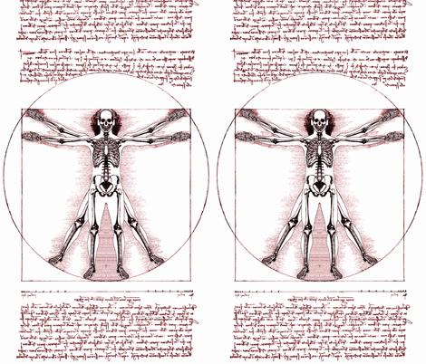 5 Vitruvian Man Skeleton Leonardo Da Vinci Classical Renaissance