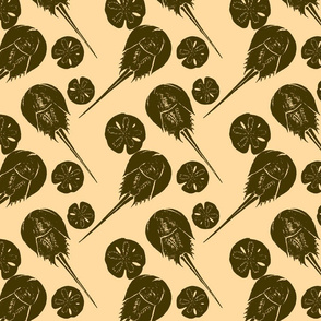 horseshoe crabs and sand dollars tar on khaki
