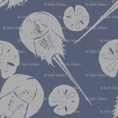 horseshoe crabs and sand dollars gray on blue