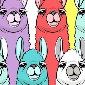 (jumbo scale) rainbow llamas