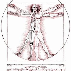 12 uncensored Vitruvian Man Leonardo da Vinci classical Renaissance anatomy anatomical studies portraits sepia antique nude naked half skeleton skulls ratios brown architecture nudity circles squares body proportions mathematics art