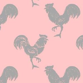 cockerel gray on pink