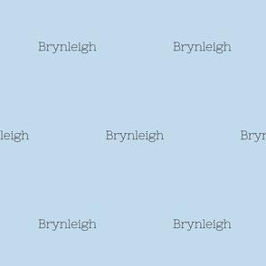 ashlynhill's letterquilt-ed-ed