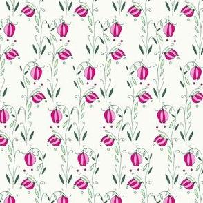 Fairy Lanterns, Cream